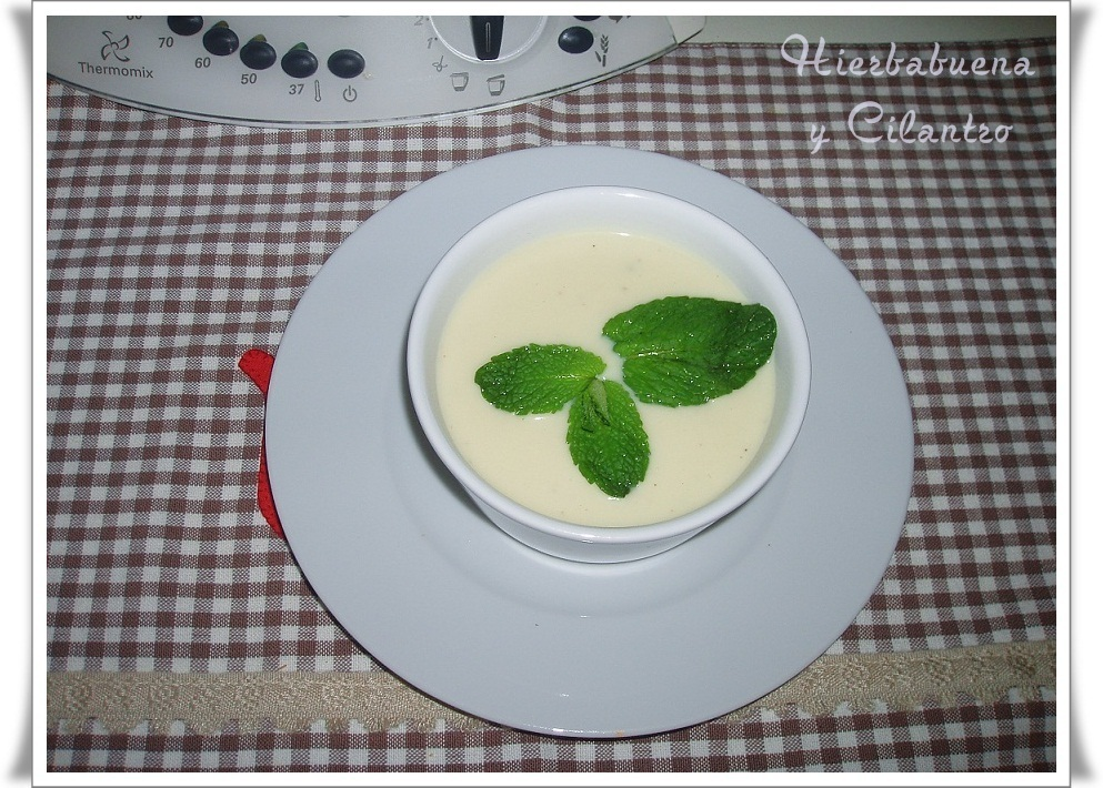 VICHYSSOISE (THERMOMIX)