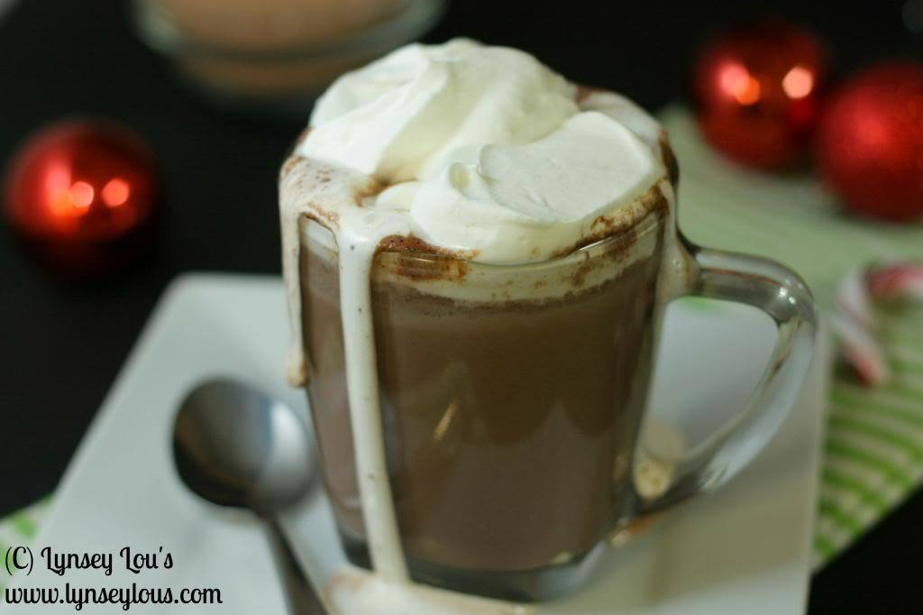 Rich, Chocolaty Hot Cocoa Mix
