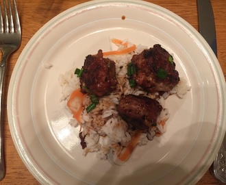 Talking Turkey (Meatballs) – Scallion Meatballs with Soy-Ginger Glaze and Carrot Rice