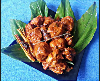 CHICKEN RENDANG ( CHICKEN WITH ROASTED COCONUT )