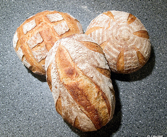 Country French-Style Bread / Essential's Columbia