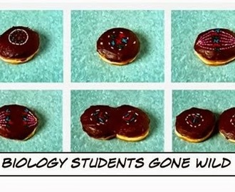 Funny Biology Doughnut Picture