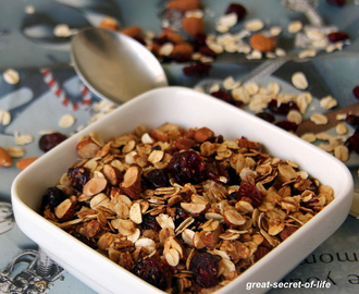 CRANBERRY GRANOLA RECIPE | HOME MADE GRANOLA RECIPE | HEALTHY BREAKFAST RECIPES