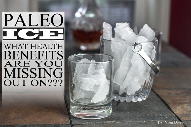 Paleo Ice Recipe