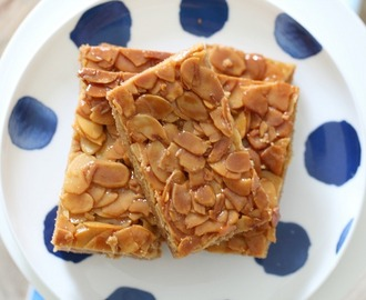 Thermomix Honey Almond Slice
