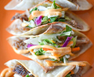 Asian Pork Wonton Tacos