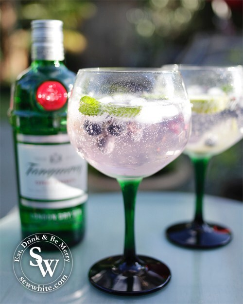 Blueberry Gin and Tonic Recipe