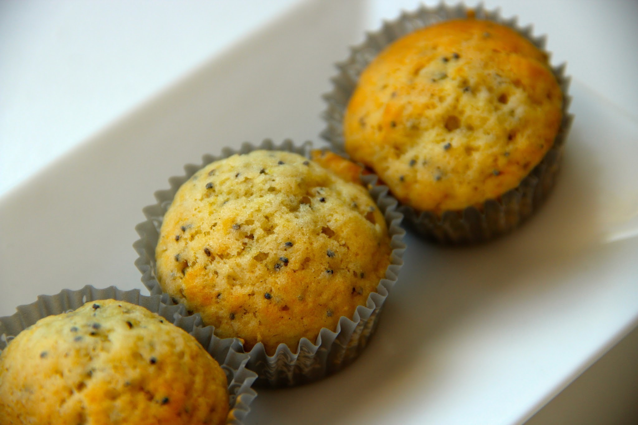 American Poppy Seed Muffins