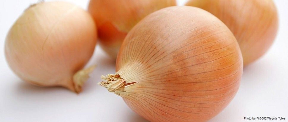 5 Tips for Cutting Onions Without Tears