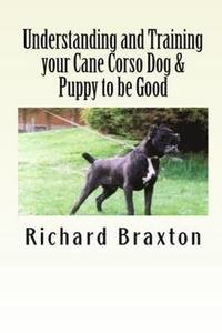 Understanding and Training Your Cane Corso Dog &; Puppy to be Good