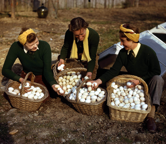 Living of Wartime Rations – Day Three: Eggs and Egg in a Nest: WW2 Mock Fried Egg Recipe