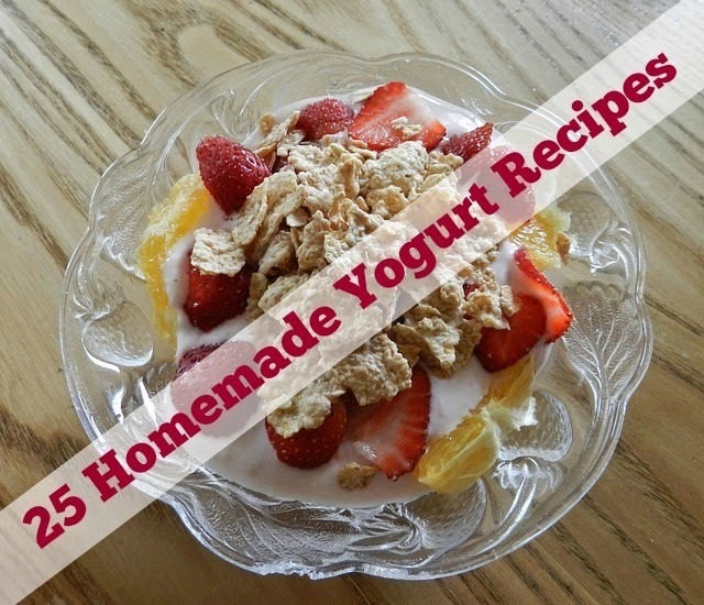 25 Homemade Yogurt Recipes