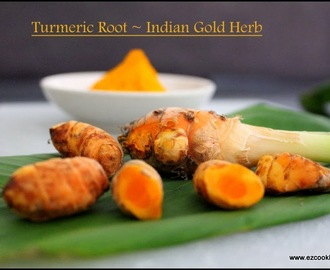 Fresh Turmeric Root - Recipes and Benefits