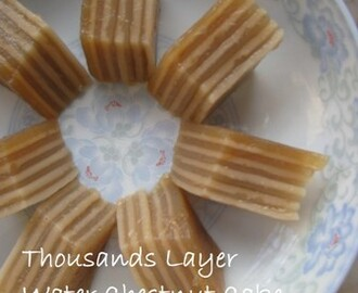 Thousand Layer Water Chestnut Cake 港式QQ千层马蹄糕