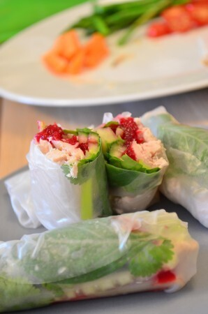 Vietnamese spring roll recipe with Turkey and Cranberry