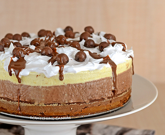 Icecream Cake with Chocolate Mousse & Malt Balls