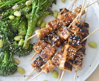 Teriyaki Tofu Spiesjes BBQ (video)