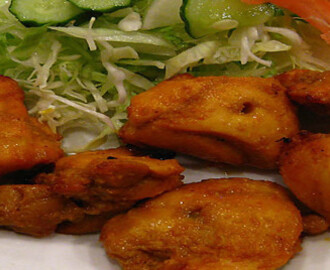 Kip gefrituurd (fried chicken)