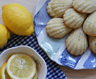 Lemon Poppy Seed Madeleines