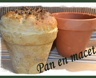 PAN EN MACETA