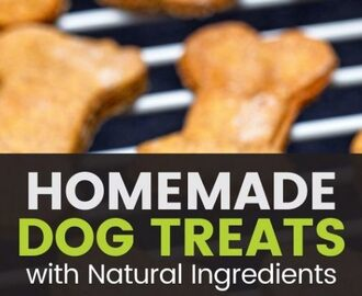 Homemade Dog Treats: Easy Recipes Your Pet Will Love!