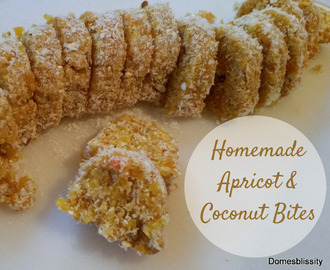 Homemade Apricot Coconut Bites
