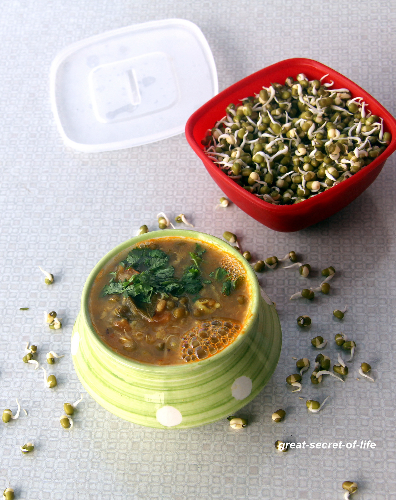 sprouted green gram gravy - side dish for roti / rice