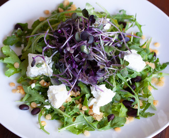 Lentils, Black Beans, Goat Cheese & Baby Green Salad