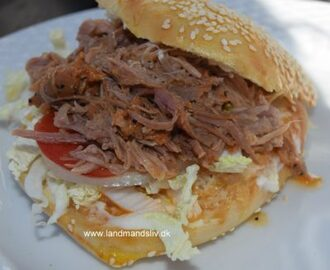 Pulled pork burger – nem
