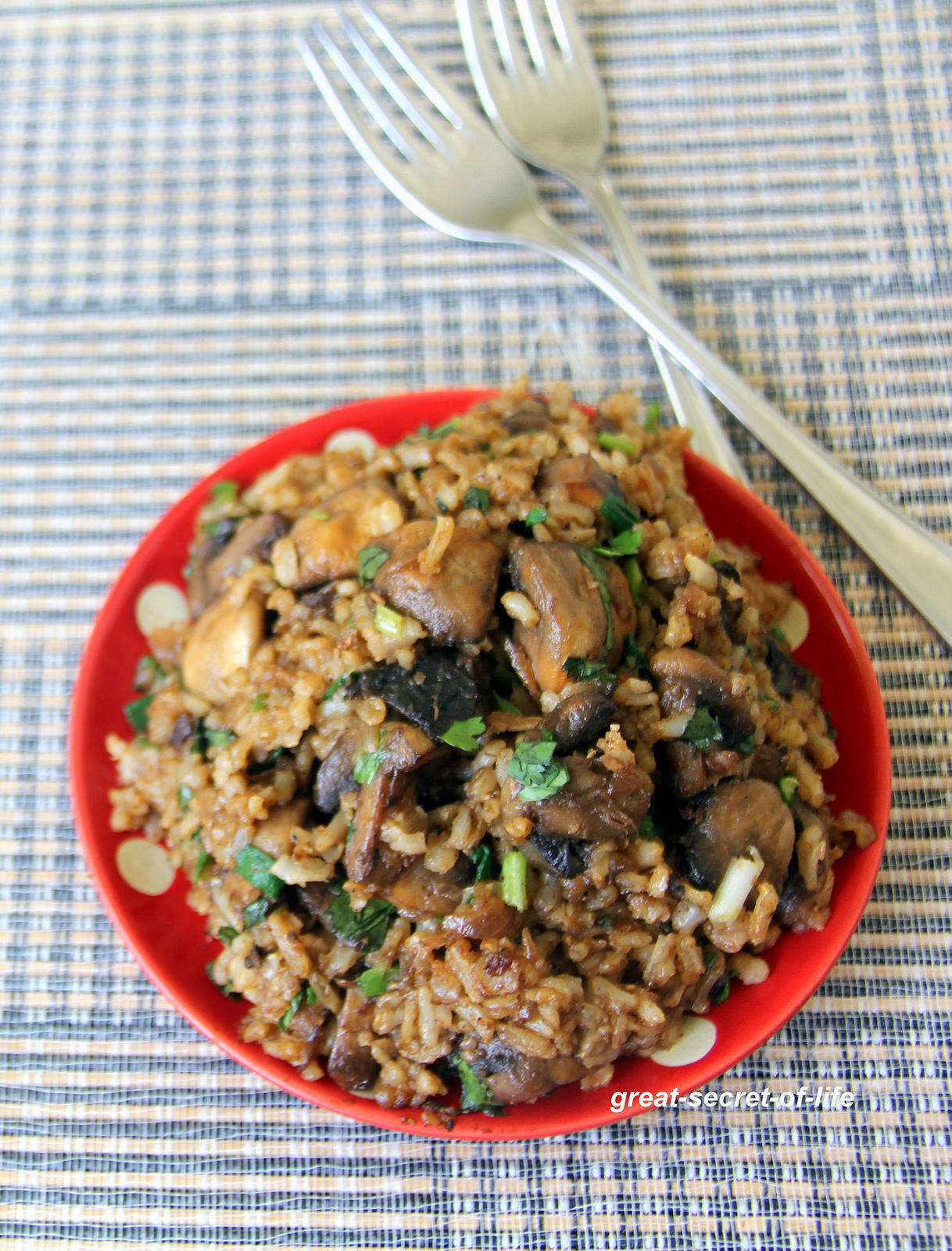 Mushroom Fried rice - Simple lunch recipes - Simple lunch box recipes - Simple one pot meal