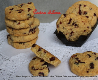 GALLETAS AVENA CON ARÁNDANOS SECOS