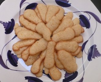 Cat Got Your Tongue? Cats' Tongue Cookies. Make 'em Fast!