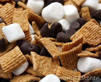 Smores Trail Mix  {After School Snack or Lunch Box Treat}