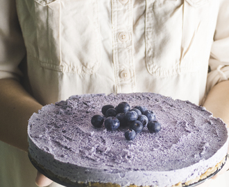 Frozen blueberry cheesecake | gluten-free&vegan|