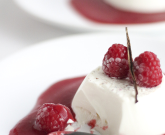 Panna Cotta de Baunilha com Coulis de Framboesa | Vanilla Panna Cotta with Raspberry Coulis