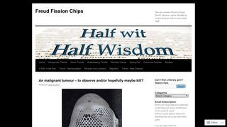 Freud Fission Chips