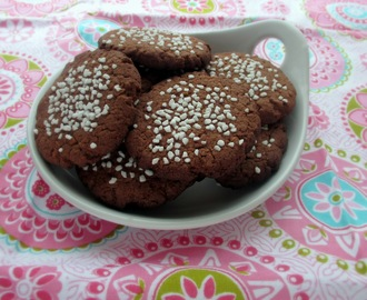 Chocolate and Coconut Cookies