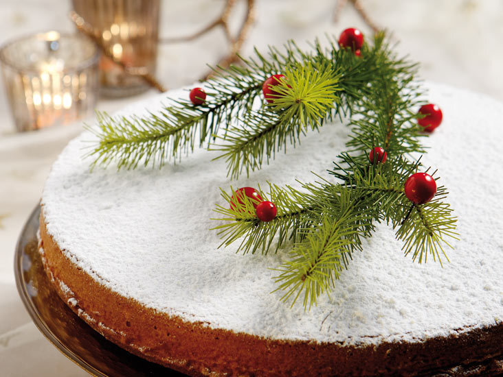 ΒΑΣΙΛΟΠΙΤΑ ΜΕ ΚΡΑΝΜΠΕΡΙΣ / GREEK NEW YEAR'S CAKE (VASILOPITA) WITH CRANBERRIES