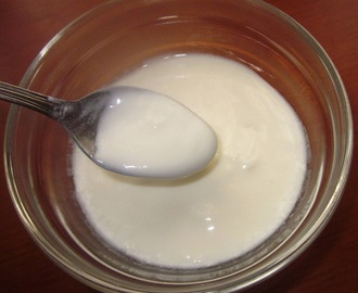 YOGURT NATURAL    ( sin yogurtera )