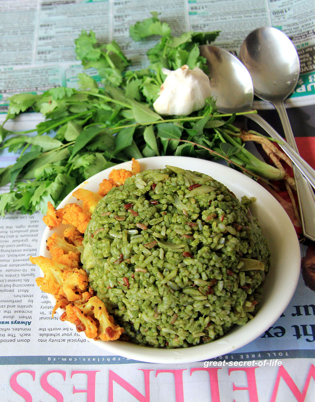 Green Rice - Cilantro, Curry leaves and Mint rice - Coriander leaves, curry leaves and Mint leaves rice - Pudina Kothamalli karuveppilai Sadam - Simple healthy rice - Lunch recipes
