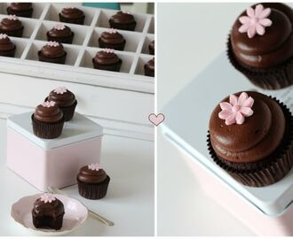 Chocolate cupcakes & luscious chocolate cream cheese frosting
