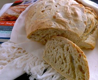 ARTISAN BREAD IN FIVE MINUTES A DAY - MASTER RECIPE / RECEITA BASE