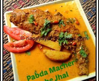 Pabda Macher Sorshe Jhal( Pabo Catfish in mustard gravy)