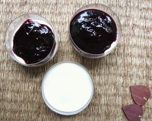 PANNA COTTA AU COULIS DE MYRTILLES