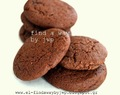 cocoa cookies... easy, fast & successful