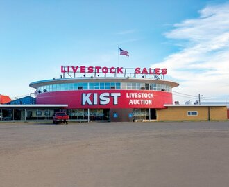 Livestock Auction Markets Reach New Heights in North Dakota
