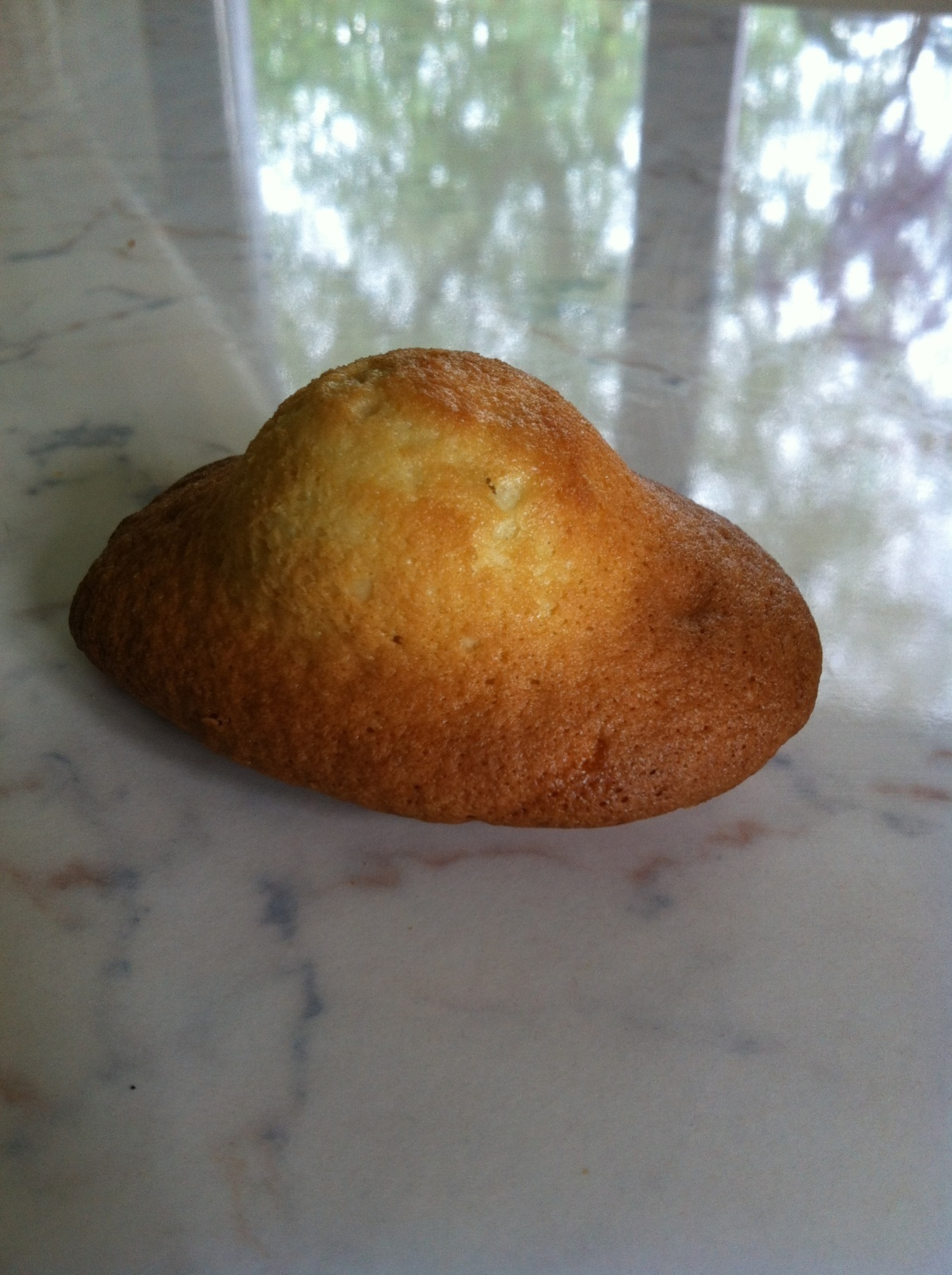 Madeleines (thermomix)