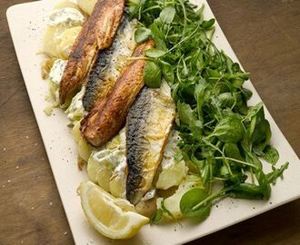 Warm mackerel with potato and wild garlic | Ottolenghi recipes, Seafood recipes, How to cook potatoes