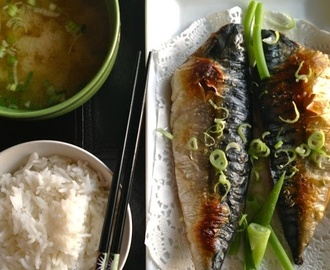 T and T: Broiled Mackerel (Saba Shioyaki) | Mackerel recipes, Saba fish recipe, Recipes with fish sauce