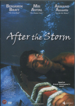 After the storm - dvd